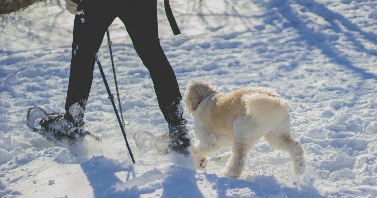 Bielizna termoaktywna – świetne rozwiązanie na zimę